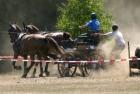 landesmeisterschaften-bad-segeberg-2006-12