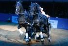russian-equestrian-games-12