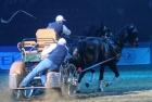 russian-equestrian-games-14