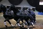 russian-equestrian-games-16