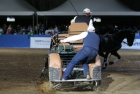 russian-equestrian-games-19