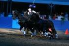 russian-equestrian-games-2