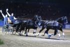russian-equestrian-games-20