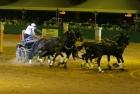 russian-equestrian-games-22