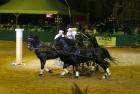 russian-equestrian-games-24
