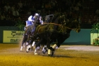 russian-equestrian-games-6