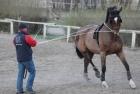 training-saison-kecskemet-2
