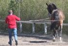 training-saison-kecskemet-32