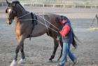 training-saison-kecskemet-6