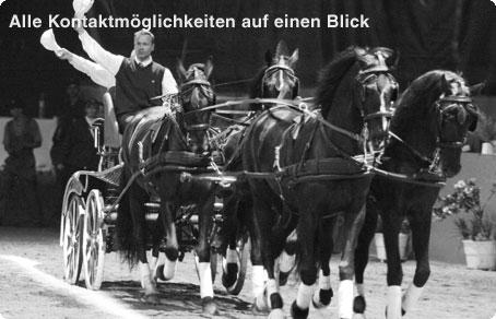 Marco Hildebrandt | Alle Kontaktmöglichkeiten auf einen Blick.